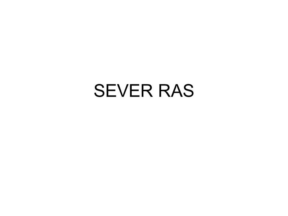 SEVER RAS
