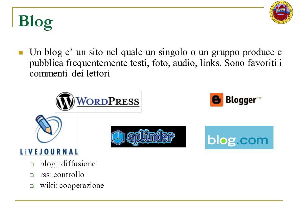 Storia diario in rete Un blog è un diario in rete.