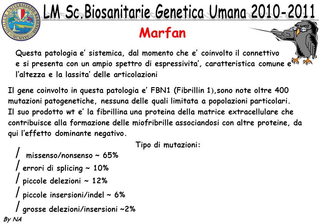By NA Marfan Il gene coinvolto in questa patologia e FBN1 (Fibrillin 1 ),sono note oltre 400 mutazioni patogenetiche, nessuna delle quali limitata a p