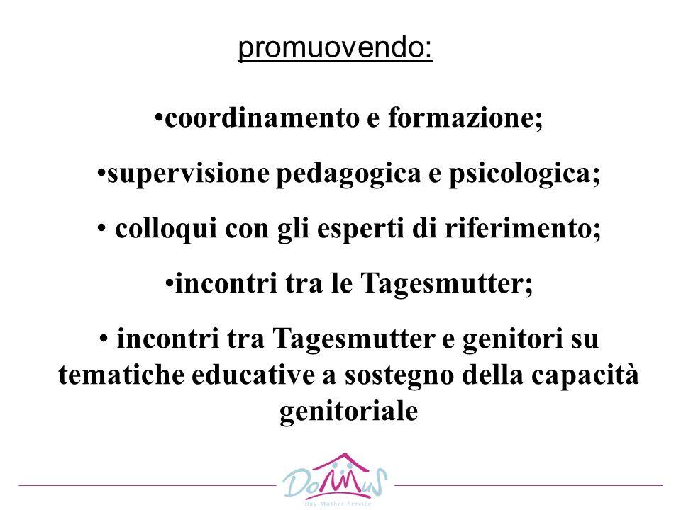 promuovendo: coordinamento e formazione; supervisione pedagogica e psicologica; colloqui con gli esperti di riferimento; incontri tra le Tagesmutter;