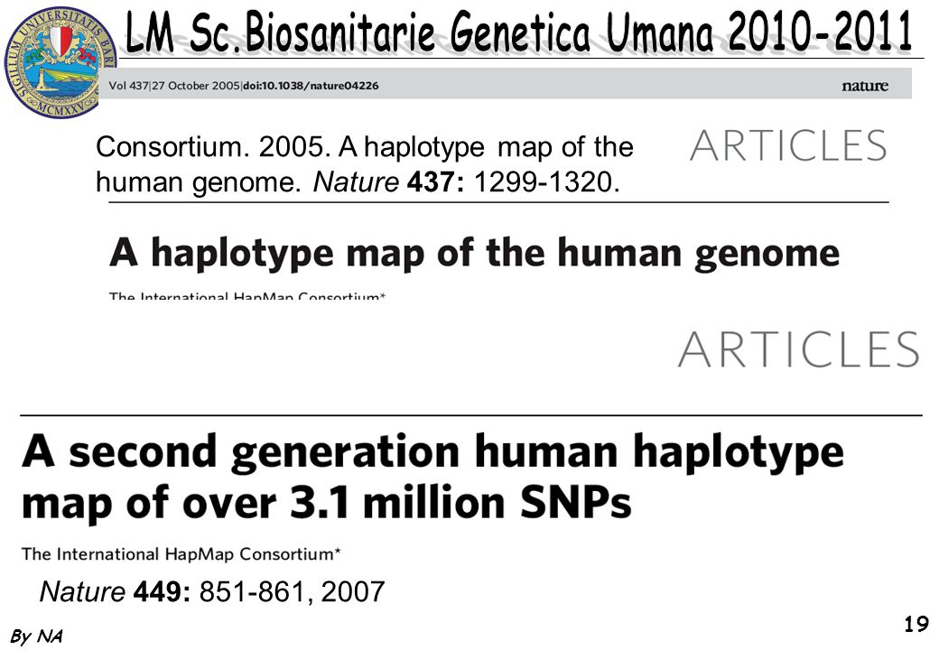 By NA 19 Consortium. 2005. A haplotype map of the human genome. Nature 437: 1299-1320. Nature 449: 851-861, 2007.