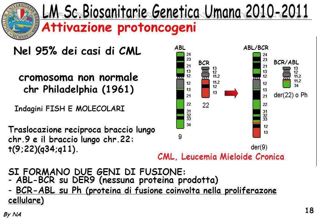 By NA 18 Attivazione protoncogeni cromosoma non normale chr Philadelphia (1961) Nel 95% dei casi di CML Indagini FISH E MOLECOLARI SI FORMANO DUE GENI