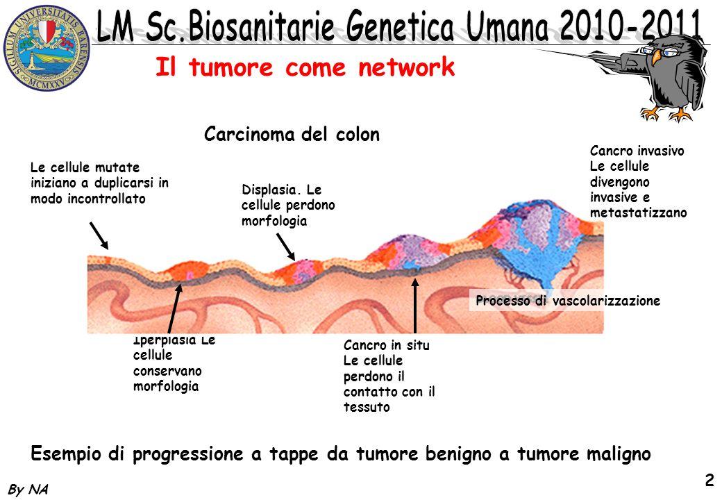 By NA 13 Oncogeni