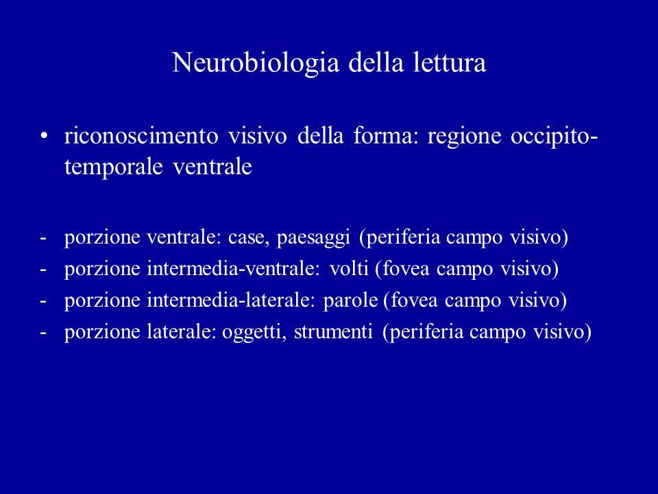 Neurobiologia della lettura riconoscimento visivo della forma: regione occipito- temporale ventrale -porzione ventrale: case, paesaggi (periferia camp
