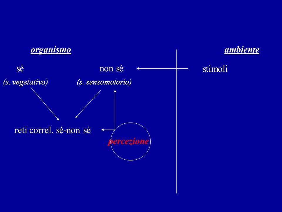 organismo ambiente sé non sè stimoli (s. vegetativo) (s. sensomotorio) reti correl. sé-non sè percezione