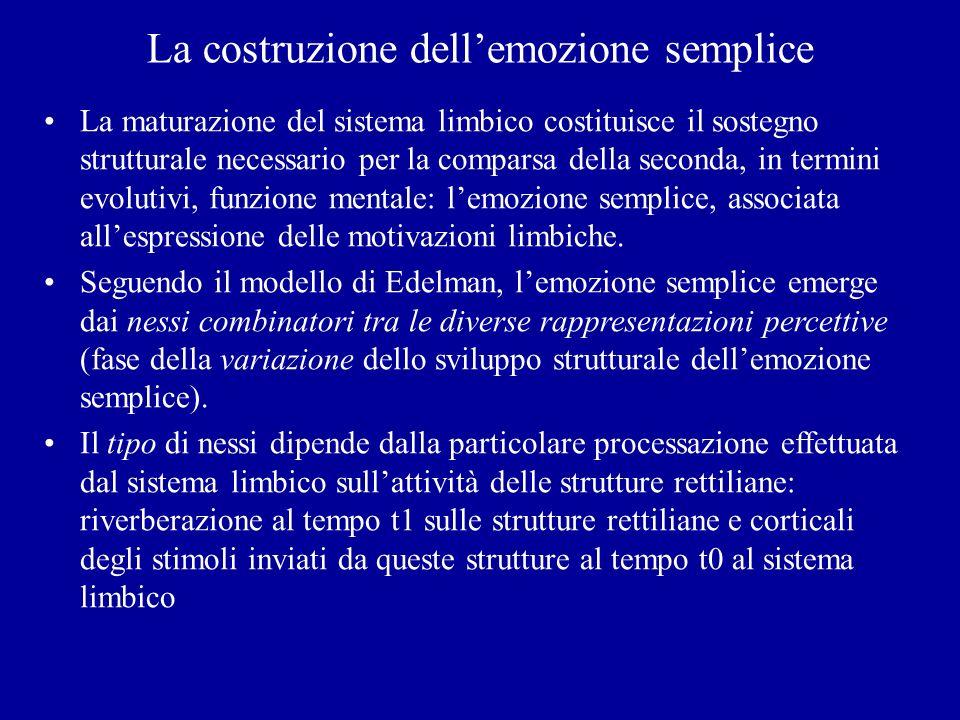 La costruzione dellemozione semplice La maturazione del sistema limbico costituisce il sostegno strutturale necessario per la comparsa della seconda,