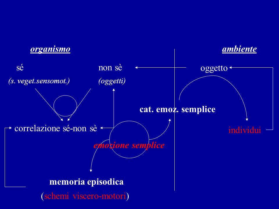 organismo ambiente sé non sè oggetto (s. veget.sensomot.) (oggetti) correlazione sé-non sè cat. emoz. semplice emozione semplice memoria episodica (sc