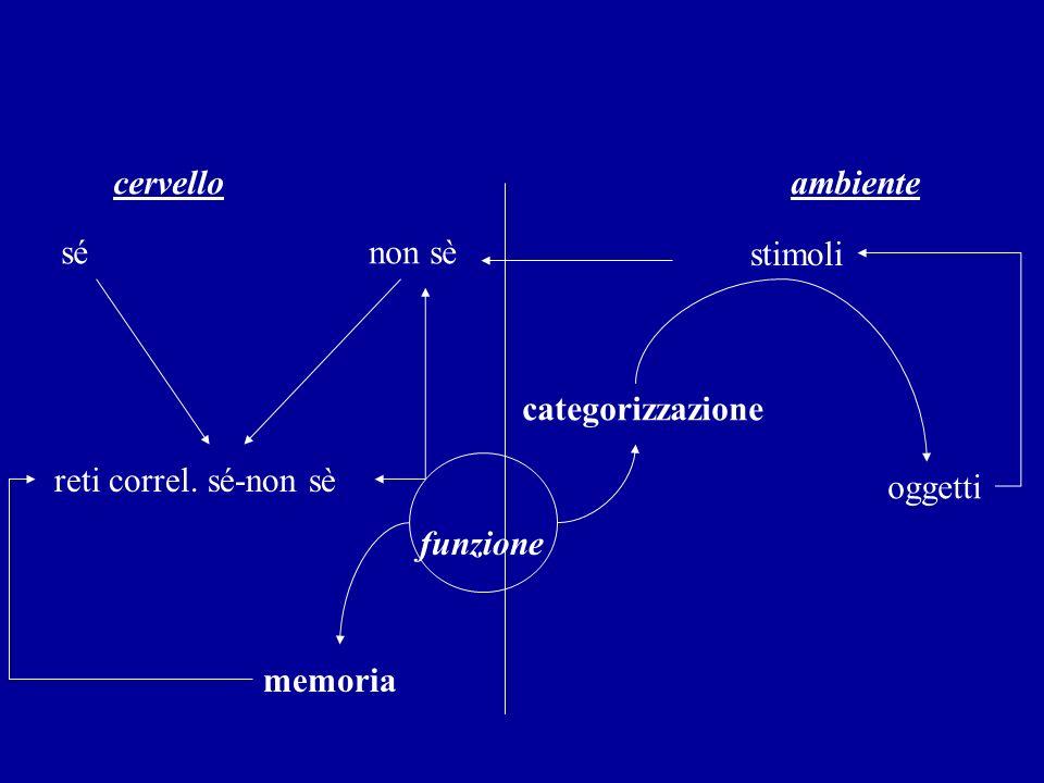 La costruzione dellemozione complessa Sul versante relativo al sé si costituisce la rappresentazione dello schema corporeo, inscindibilmente connessa alla memoria di eventi.