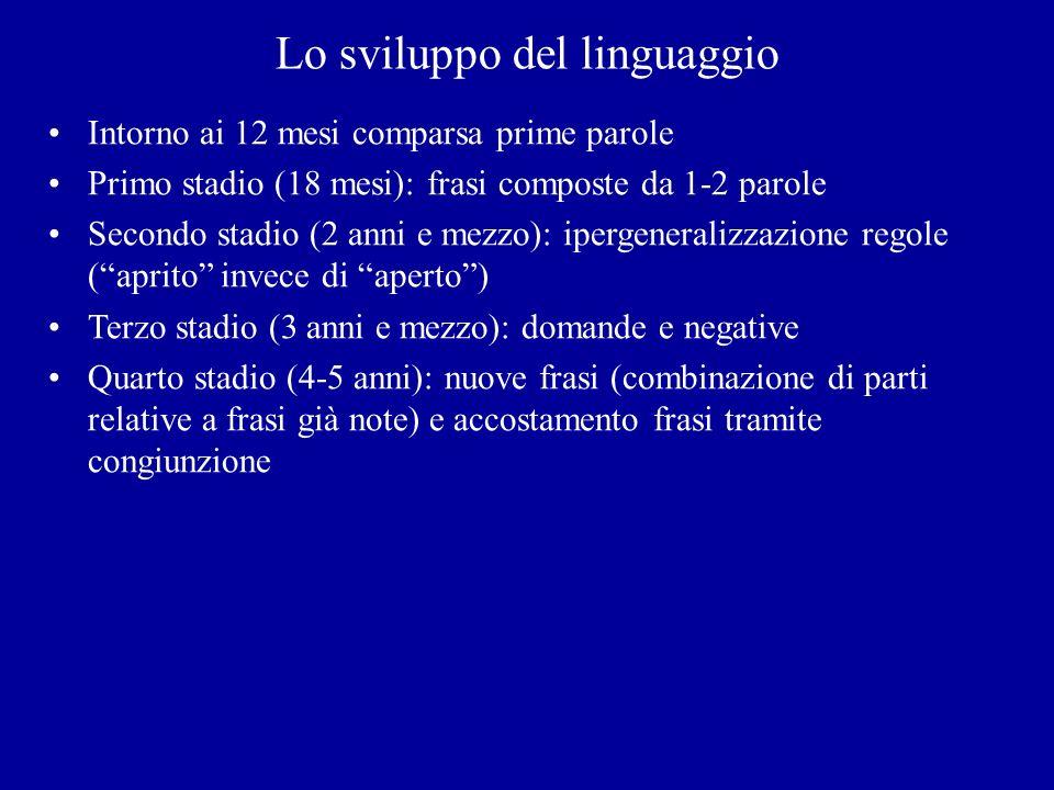 Lo sviluppo del linguaggio Intorno ai 12 mesi comparsa prime parole Primo stadio (18 mesi): frasi composte da 1-2 parole Secondo stadio (2 anni e mezz