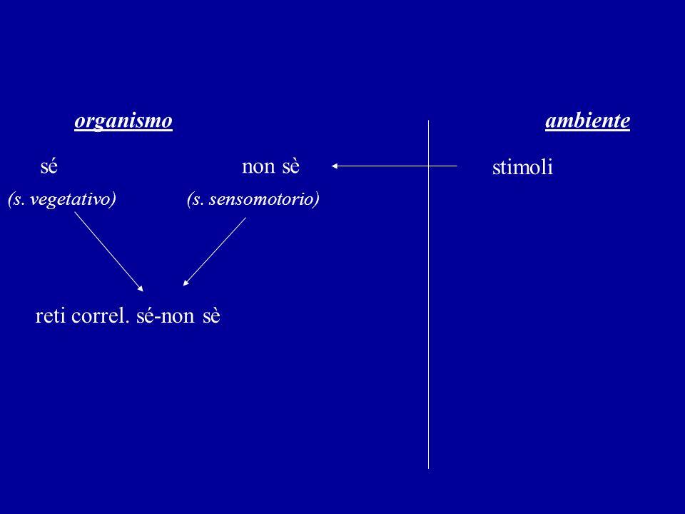 organismo ambiente sé non sè stimoli (s. vegetativo) (s. sensomotorio) reti correl. sé-non sè