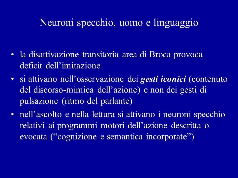 Neuroni specchio, uomo e linguaggio la disattivazione transitoria area di Broca provoca deficit dellimitazione si attivano nellosservazione dei gesti