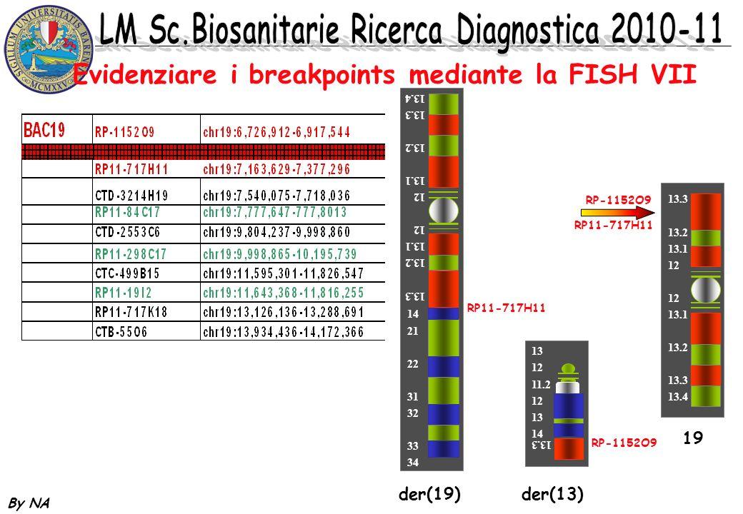 By NA Evidenziare i breakpoints mediante la FISH VII 13.3 13.2 13.1 12 13.1 13.2 13.3 13.4 RP-1152O9 RP11-717H11 13 12 11.2 12 13 14 13.3 RP-1152O9 de