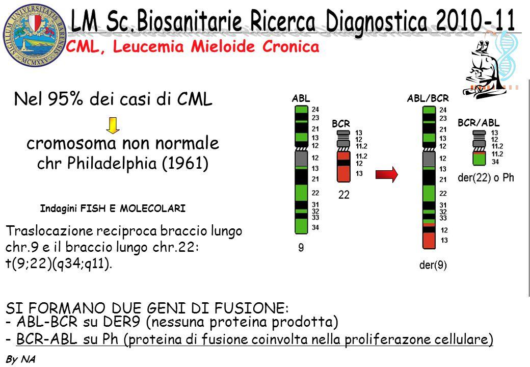 By NA cromosoma non normale chr Philadelphia (1961) Nel 95% dei casi di CML Indagini FISH E MOLECOLARI SI FORMANO DUE GENI DI FUSIONE: - ABL-BCR su DE