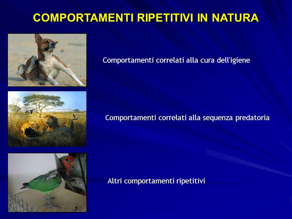 Comportamenti correlati alla cura dell igieneComportamenti correlati alla sequenza predatoria Altri comportamenti ripetitivi COMPORTAMENTI RIPETITIVI IN NATURA