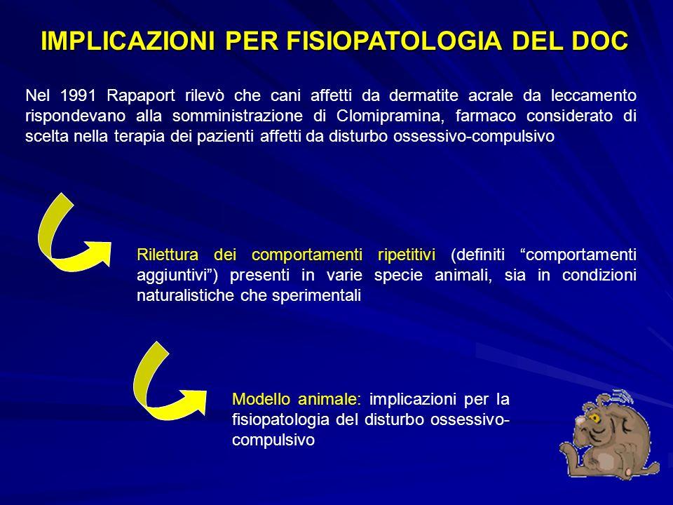 IMPLICAZIONI PER FISIOPATOLOGIA DEL DOC Nel 1991 Rapaport rilevò che cani affetti da dermatite acrale da leccamento rispondevano alla somministrazione