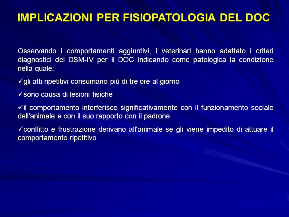 NEUROPSICOLOGIA (2) Deficit nel decision-making: prestazioni scadenti allIGT (Cavedini, 2002) Deficit nel decision-making: prestazioni scadenti allIGT (Cavedini, 2002) Deficit attentivi associati al discontrollo degli impulsi (Carlton, 1992; Grant, 2003) Deficit attentivi associati al discontrollo degli impulsi (Carlton, 1992; Grant, 2003) Deficit delle funzioni esecutive generalizzato (Rugle e Melamed, 1993) Deficit delle funzioni esecutive generalizzato (Rugle e Melamed, 1993) Evidenze bio-comportamentali nei gamblers
