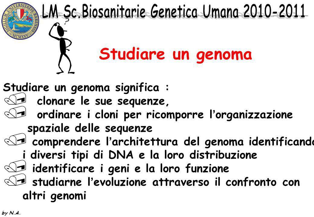 by N.A.*CLONAGGIO POSIZIONALE: si conosce solo la localizzazione cromosomica del locus.