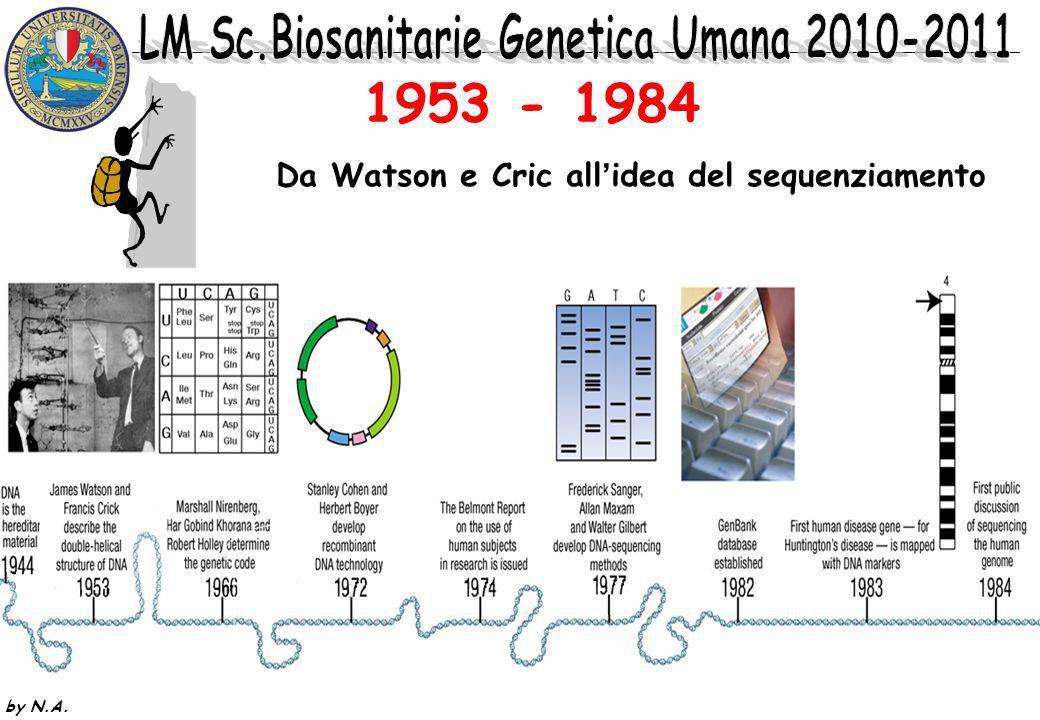 by N.A. 1953 - 1984 Da Watson e Cric allidea del sequenziamento
