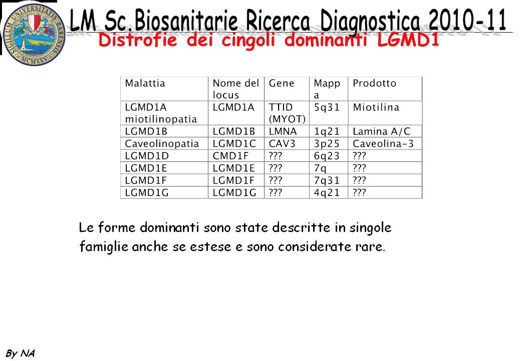 By NA Distrofie dei cingoli dominanti LGMD1