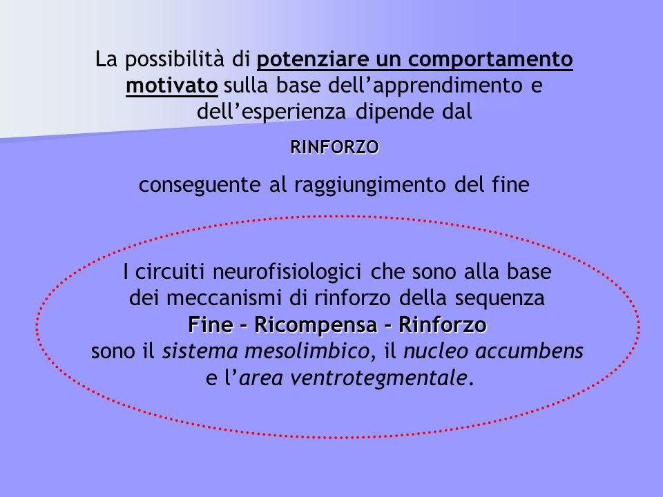 I circuiti neurofisiologici che sono alla base dei meccanismi di rinforzo della sequenza Fine - Ricompensa - Rinforzo sono il sistema mesolimbico, il