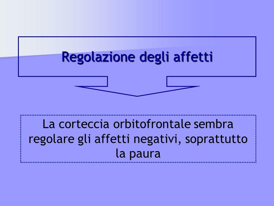 Regolazione degli affetti La corteccia orbitofrontale sembra regolare gli affetti negativi, soprattutto la paura