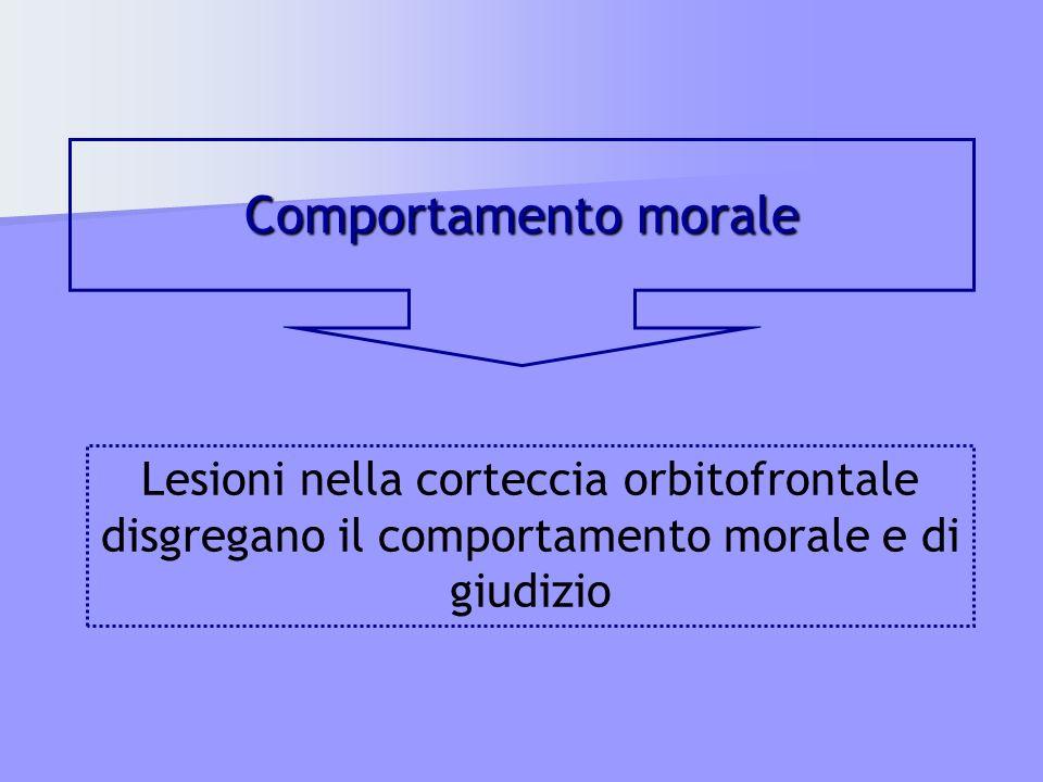 Comportamento morale Lesioni nella corteccia orbitofrontale disgregano il comportamento morale e di giudizio