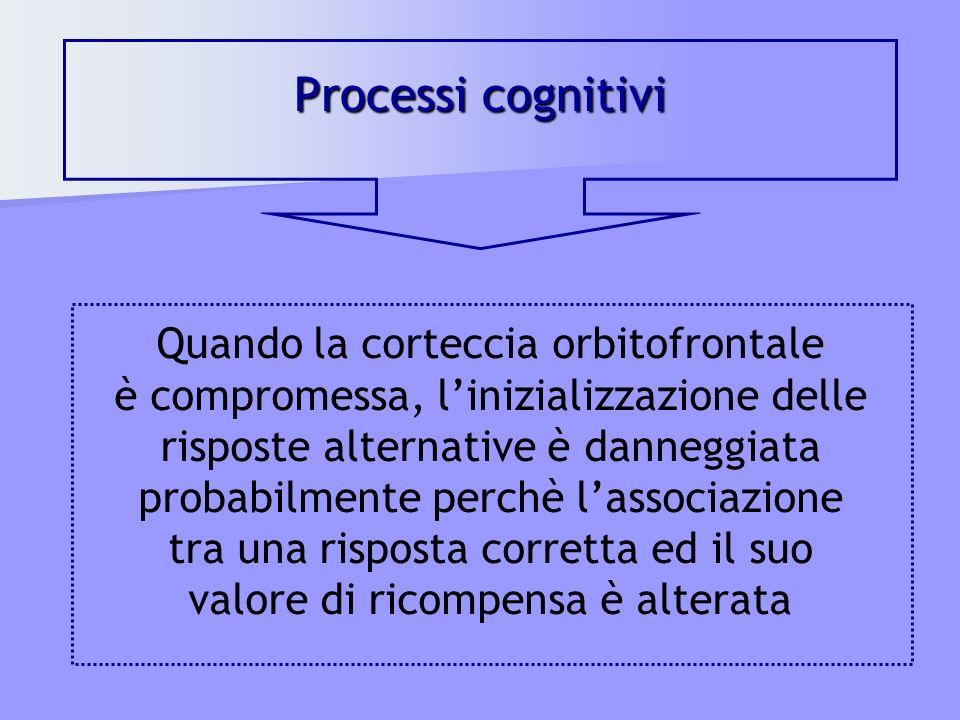 Processi cognitivi Quando la corteccia orbitofrontale è compromessa, linizializzazione delle risposte alternative è danneggiata probabilmente perchè l