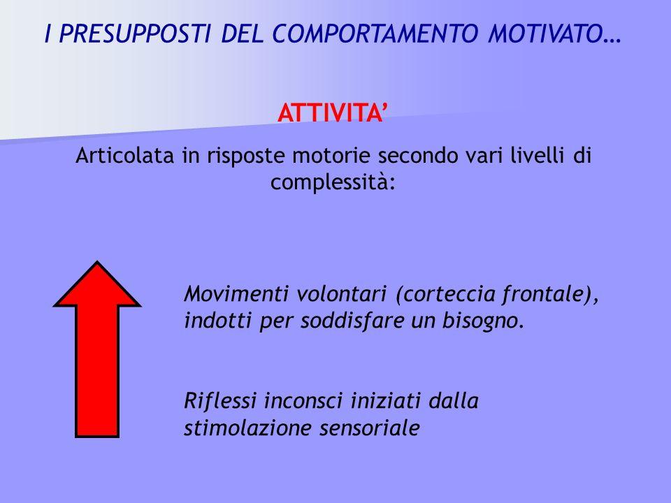 ATTIVITA Articolata in risposte motorie secondo vari livelli di complessità: Movimenti volontari (corteccia frontale), indotti per soddisfare un bisog