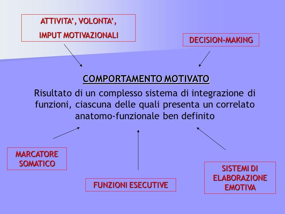 COMPORTAMENTO MOTIVATO Risultato di un complesso sistema di integrazione di funzioni, ciascuna delle quali presenta un correlato anatomo-funzionale be