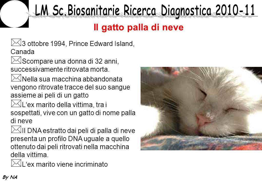 By NA Il gatto palla di neve * 3 ottobre 1994, Prince Edward Island, Canada * Scompare una donna di 32 anni, successivamente ritrovata morta. * Nella