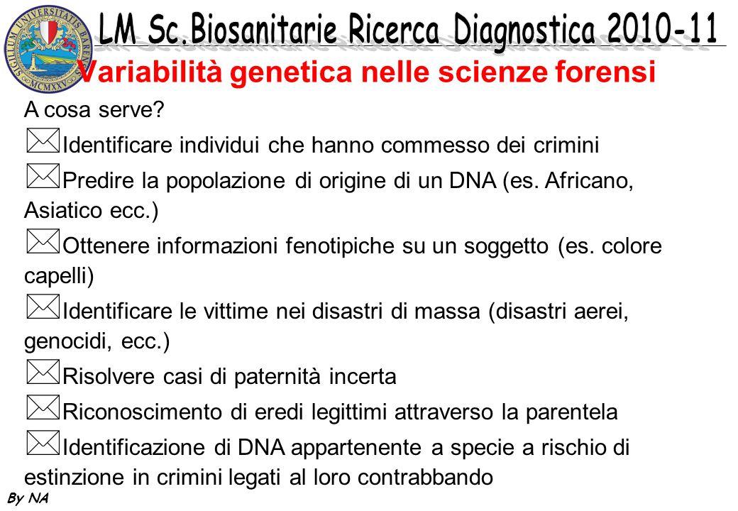 By NA Variabilità genetica nelle scienze forensi A cosa serve? * Identificare individui che hanno commesso dei crimini * Predire la popolazione di ori