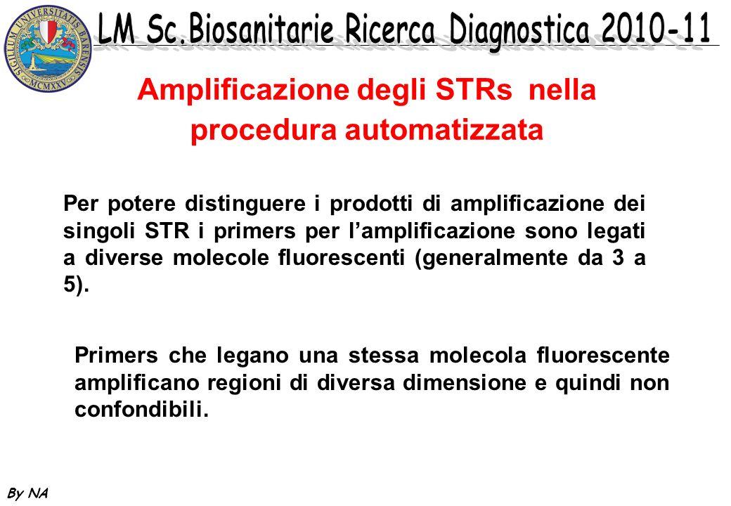 By NA Per potere distinguere i prodotti di amplificazione dei singoli STR i primers per lamplificazione sono legati a diverse molecole fluorescenti (g