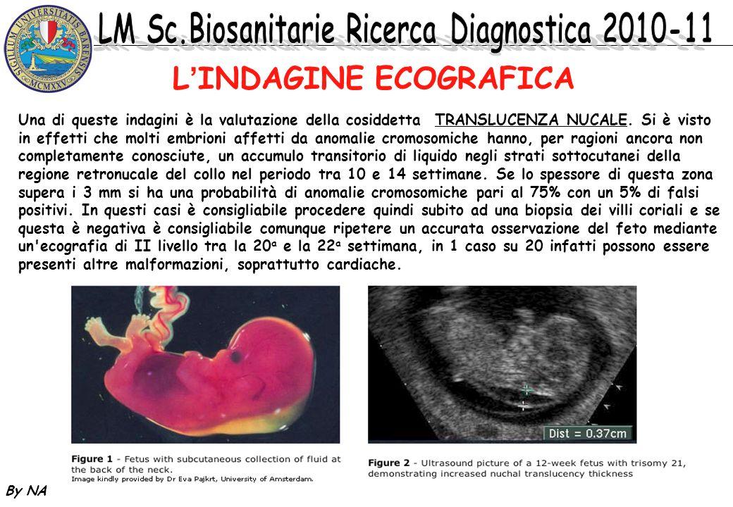 By NA LINDAGINE ECOGRAFICA Una di queste indagini è la valutazione della cosiddetta TRANSLUCENZA NUCALE. Si è visto in effetti che molti embrioni affe