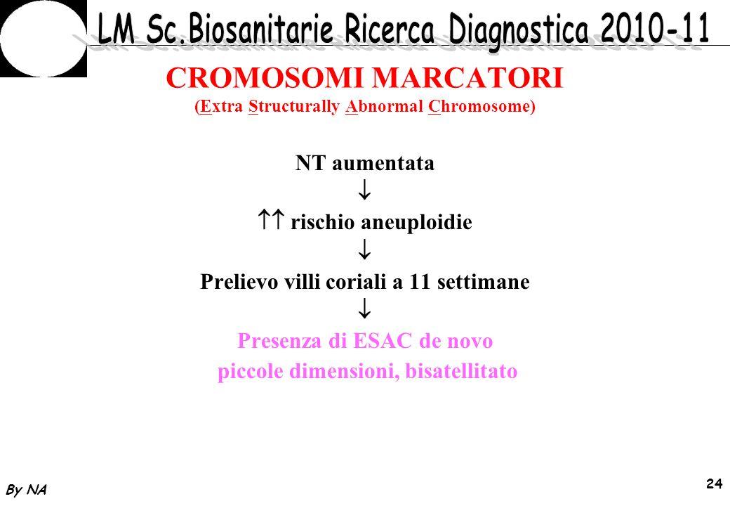 By NA 25 CROMOSOMI MARCATORI (Extra Structurally Abnormal Chromosome) FISH 13,14,15,21,22 Positiva per centromero 22 invdup(22) Cat/Eye syndrome
