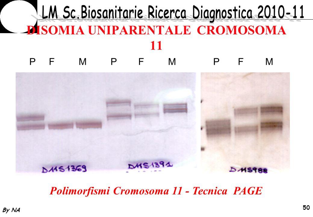 By NA 51 Mosaicismo trisomia 11 Esame citogenetico: Cariotipo 46,XY (150 metafasi) Attesa Fenotipo nella norma (follow-up a 24 mesi) Screening molecolare con microsatelliti cromosoma 11: Esclusione UDP