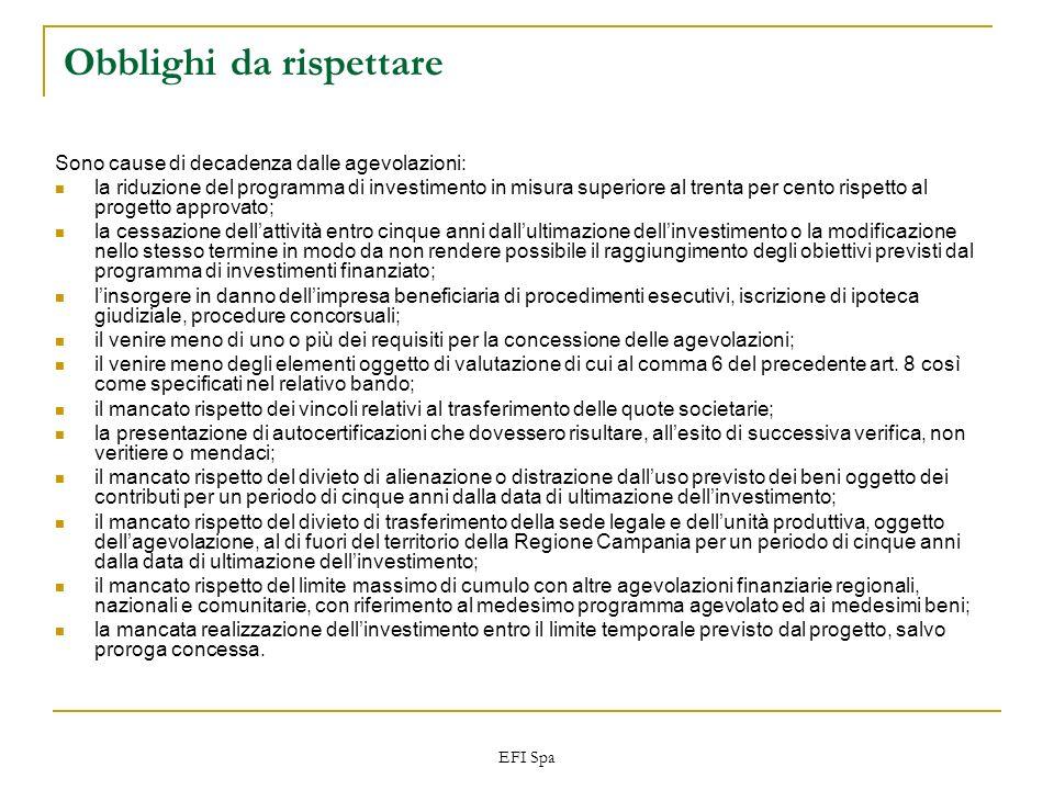 EFI Spa Obblighi da rispettare Sono cause di decadenza dalle agevolazioni: la riduzione del programma di investimento in misura superiore al trenta pe