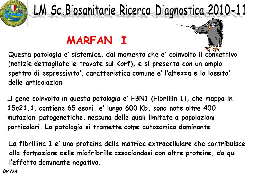 By NA MARFAN I Il gene coinvolto in questa patologia e FBN1 (Fibrillin 1 ), che mappa in 15q21.1, contiene 65 esoni, e lungo 600 Kb, sono note oltre 4