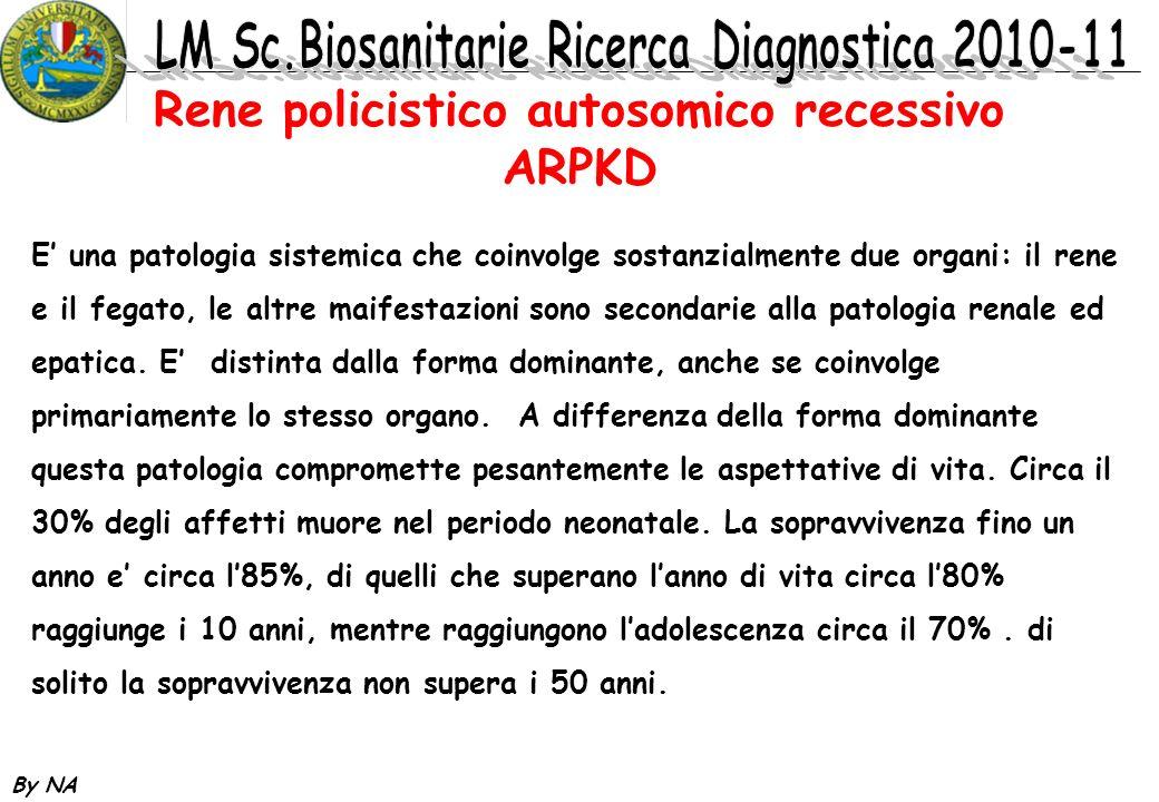 By NA Rene policistico autosomico recessivo ARPKD E una patologia sistemica che coinvolge sostanzialmente due organi: il rene e il fegato, le altre ma