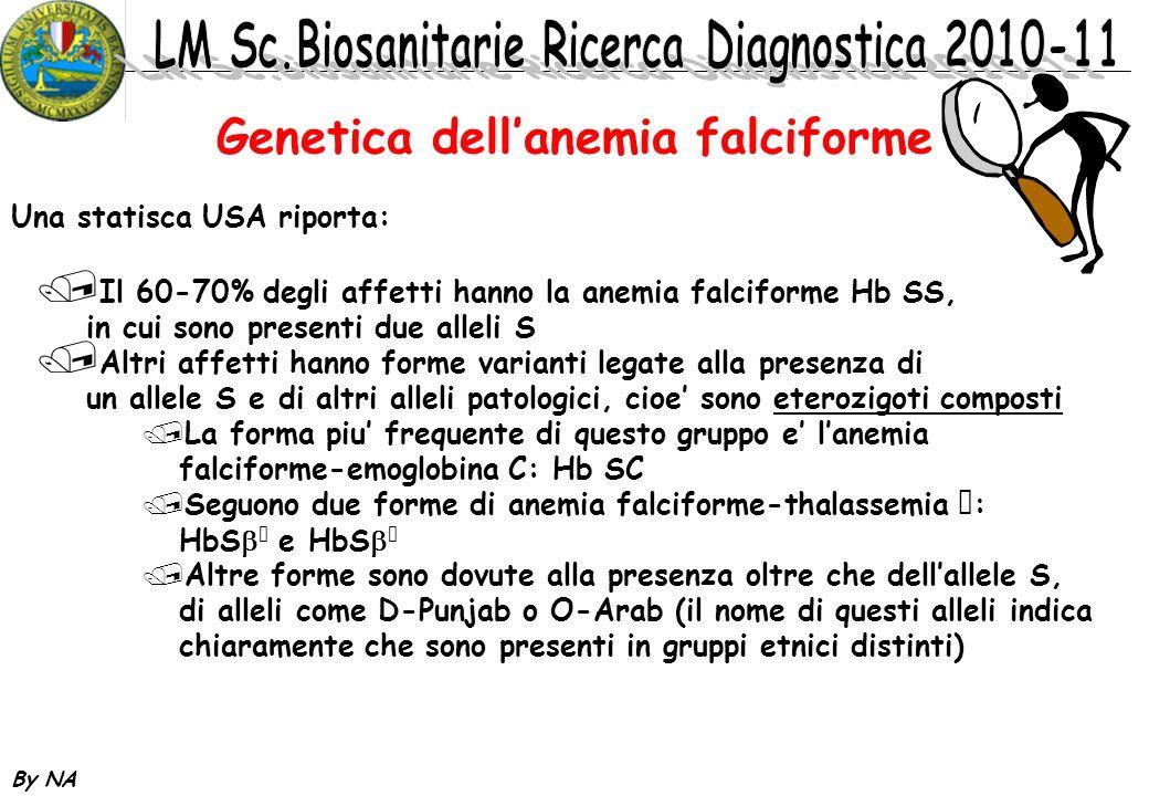 By NA Genetica dellanemia falciforme Una statisca USA riporta: / Il 60-70% degli affetti hanno la anemia falciforme Hb SS, in cui sono presenti due al