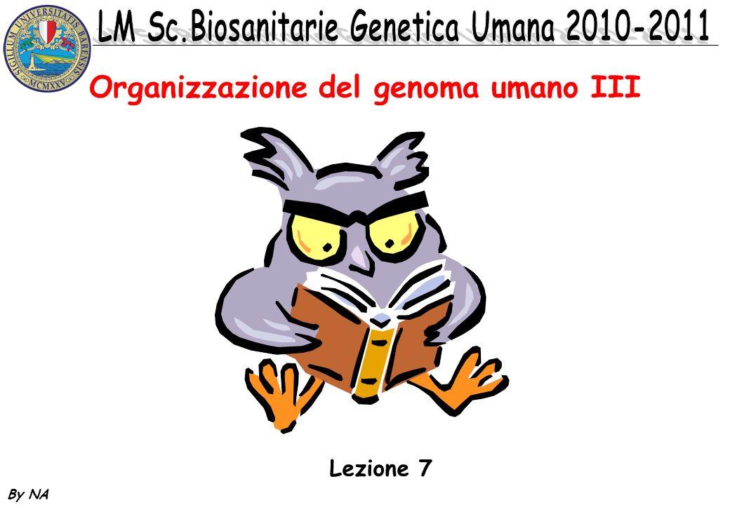 By NA Organizzazione del genoma umano III Lezione 7