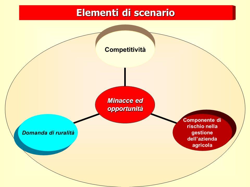 Minacce ed opportunità Competitività Componente di rischio nella gestione dellazienda agricola Domanda di ruralità Elementi di scenario