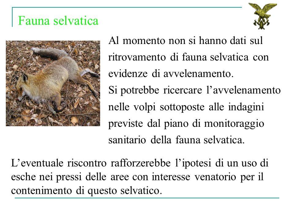 Al momento non si hanno dati sul ritrovamento di fauna selvatica con evidenze di avvelenamento. Si potrebbe ricercare lavvelenamento nelle volpi sotto
