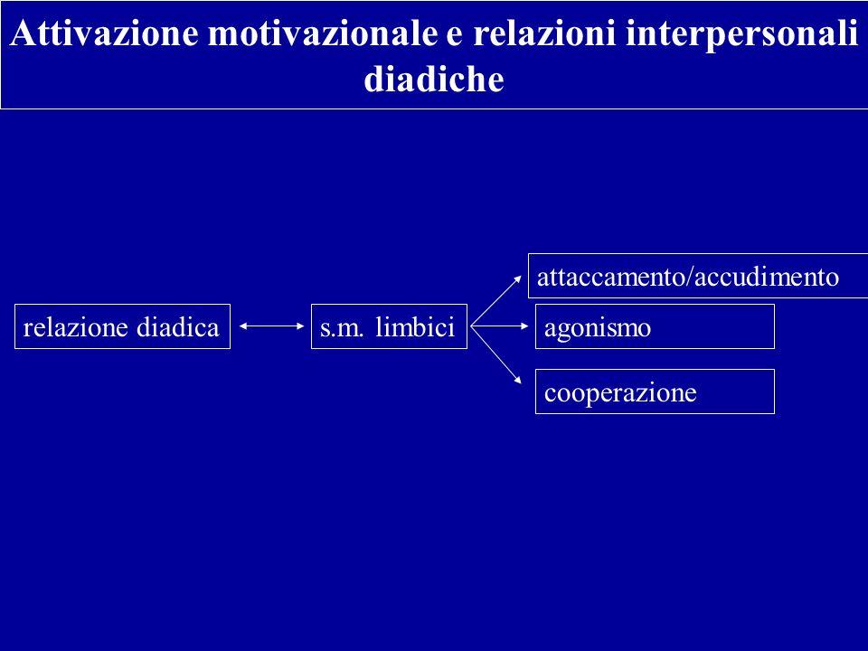 Attivazione motivazionale e relazioni interpersonali diadiche relazione diadicas.m. limbici attaccamento/accudimento agonismo cooperazione
