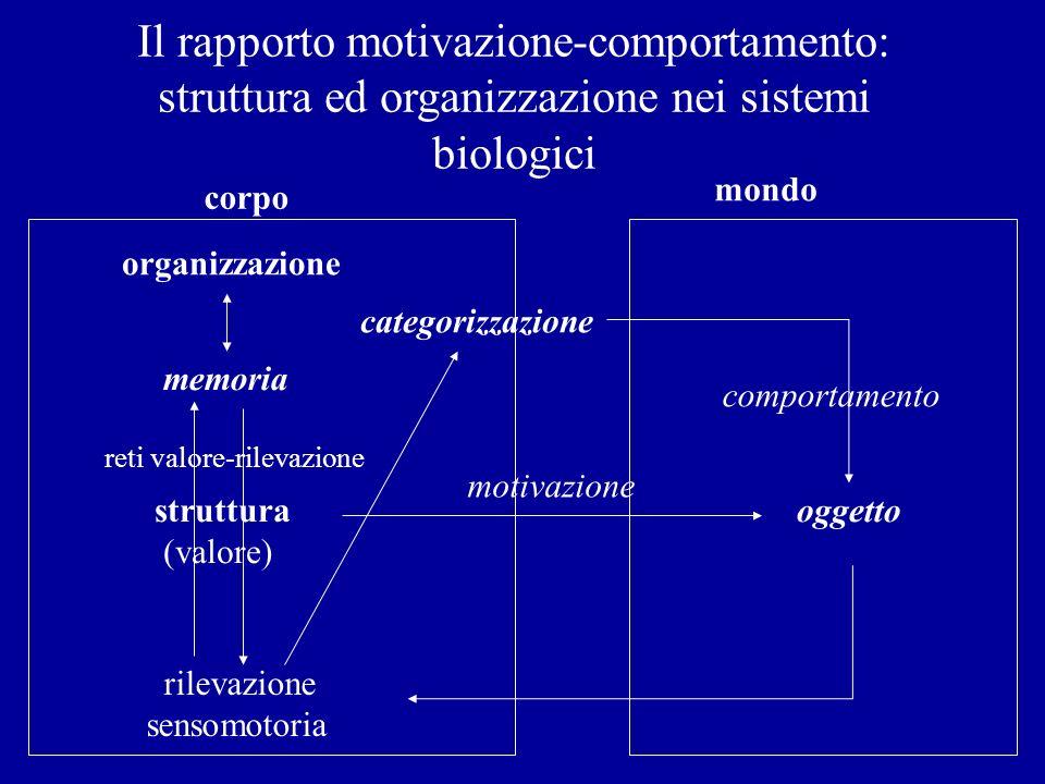Il rapporto motivazione-comportamento: struttura ed organizzazione nei sistemi biologici struttura (valore) oggetto rilevazione sensomotoria memoria c