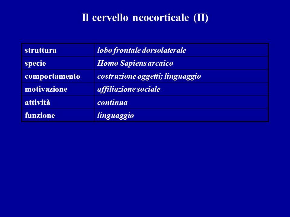 Il cervello neocorticale (II) strutturalobo frontale dorsolaterale specieHomo Sapiens arcaico comportamentocostruzione oggetti; linguaggio motivazione