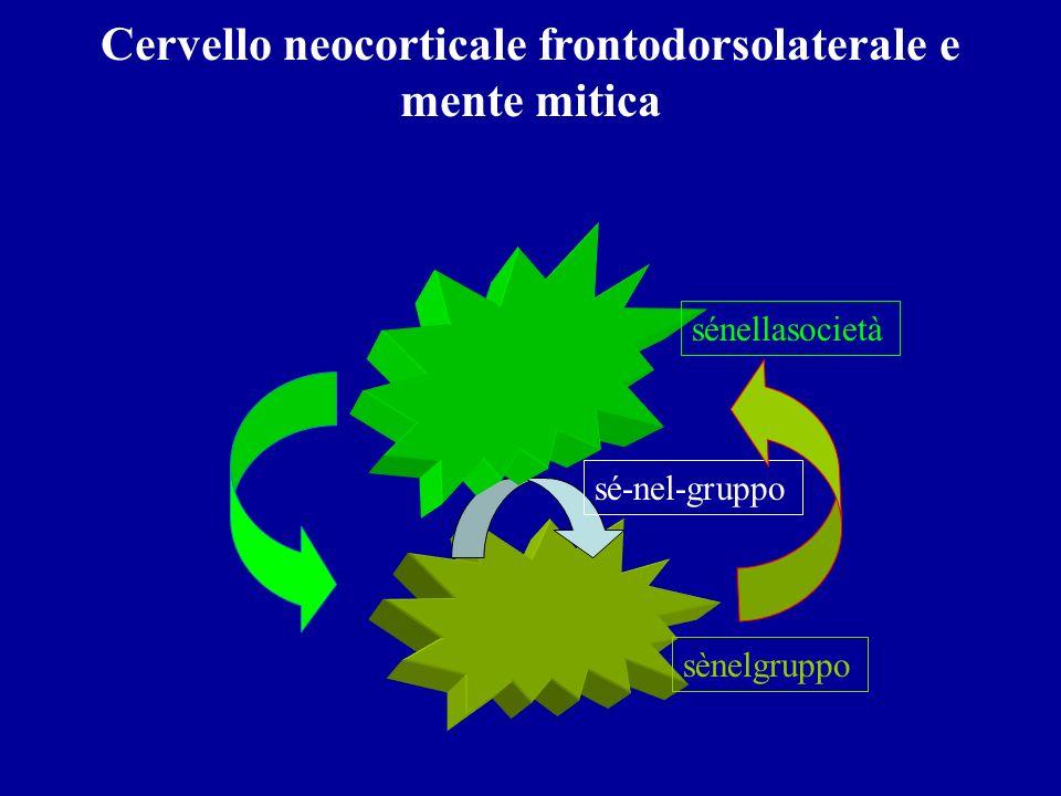 Cervello neocorticale frontodorsolaterale e mente mitica sé-nel-gruppo sènelgruppo sénellasocietà