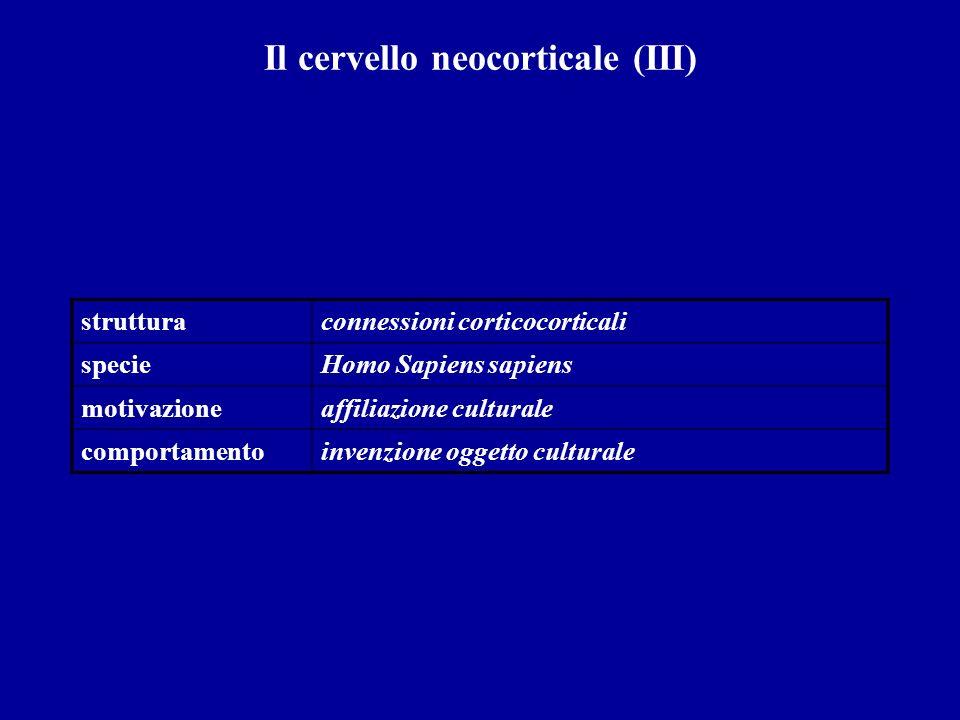Il cervello neocorticale (III) strutturaconnessioni corticocorticali specieHomo Sapiens sapiens motivazioneaffiliazione culturale comportamentoinvenzi