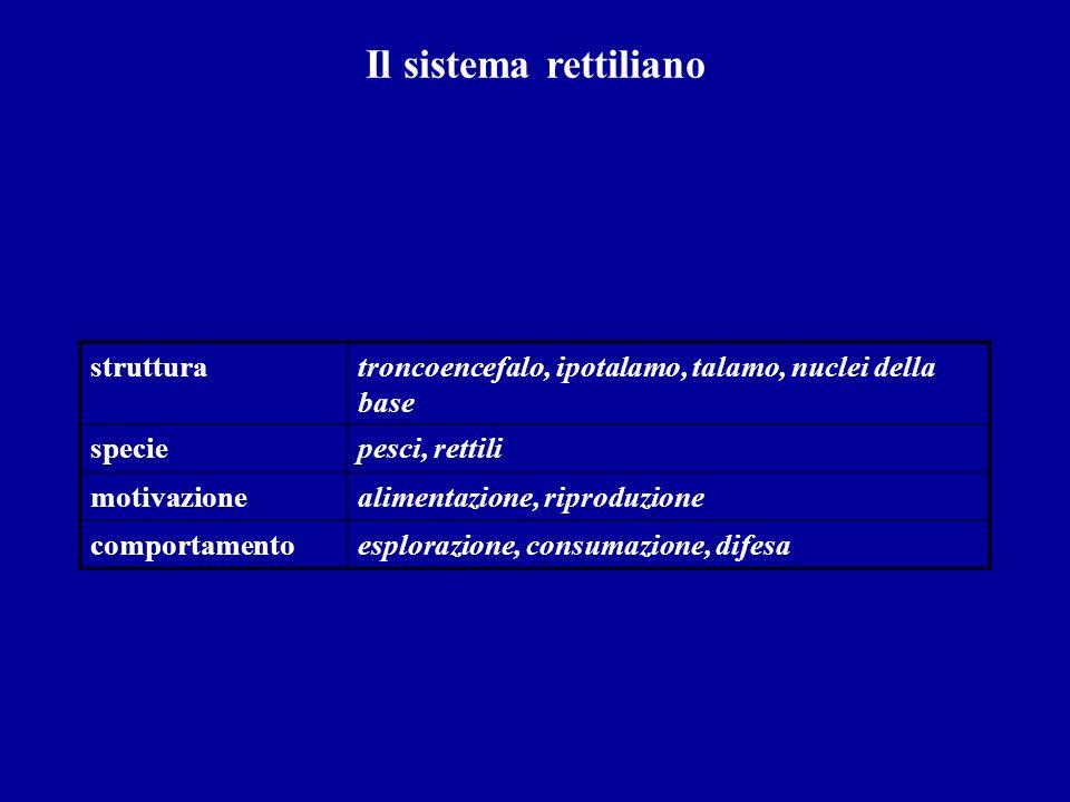 Il sistema rettiliano strutturatroncoencefalo, ipotalamo, talamo, nuclei della base speciepesci, rettili motivazionealimentazione, riproduzione compor