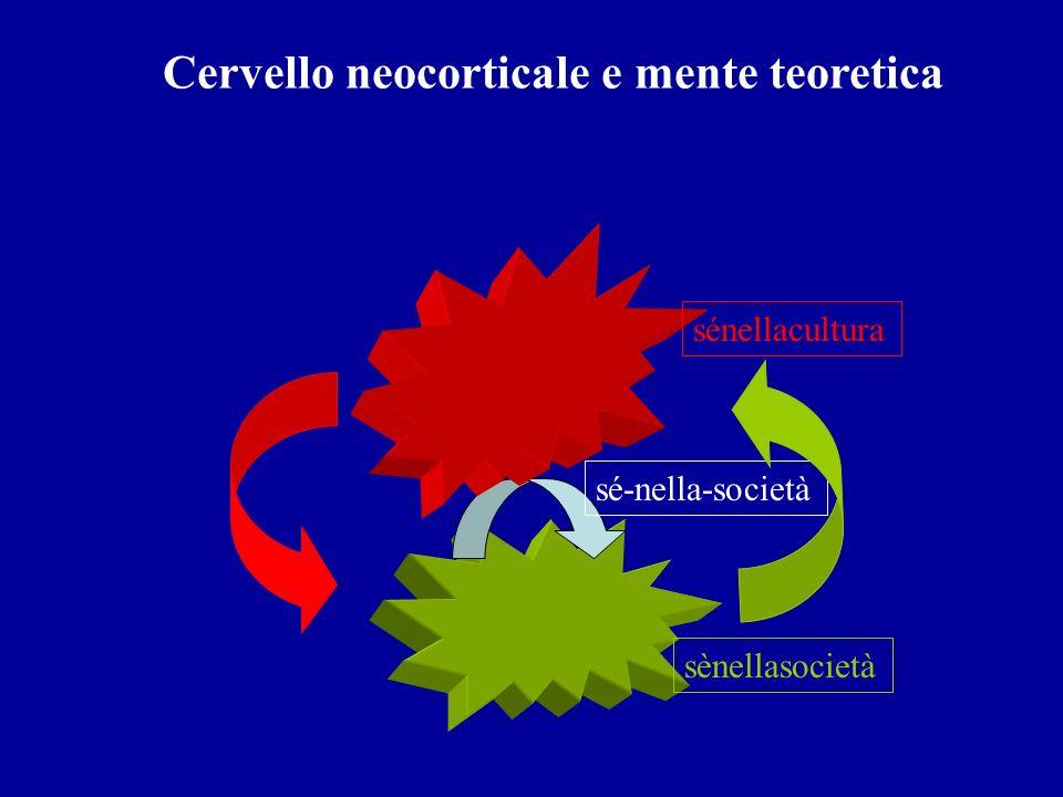 Cervello neocorticale e mente teoretica sé-nella-società sènellasocietà sénellacultura