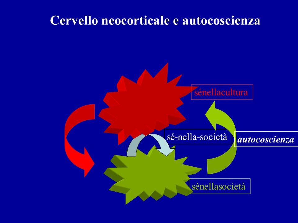 Cervello neocorticale e autocoscienza sé-nella-società sènellasocietà sénellacultura autocoscienza